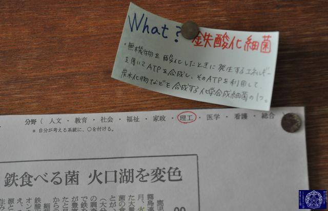 DSC_9527.JPG