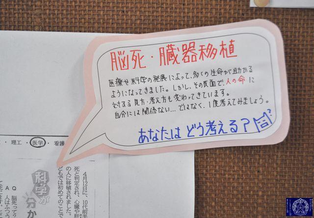 DSC_9530.JPG